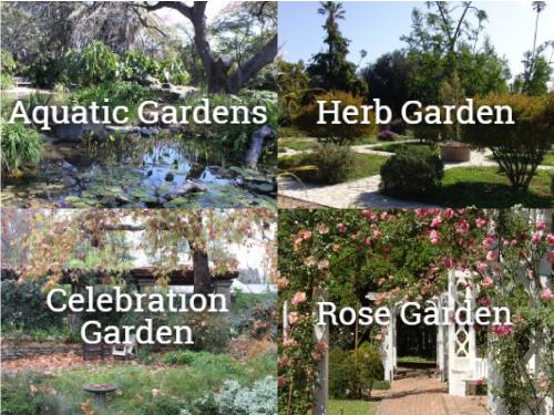 Arboretum and Botanic Garden